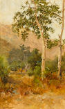 Charles A. Fries (American, 1854-1940) Trees, San Diego Area 16 x 10in