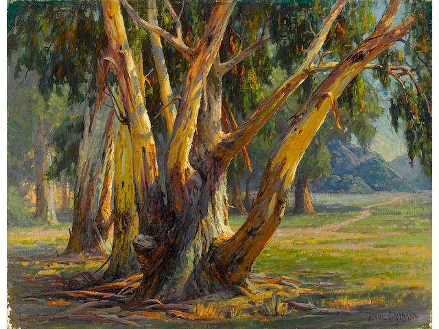 Paul A. Grimm (American, 1891-1974) Old Eucalyptus 28 x 36in