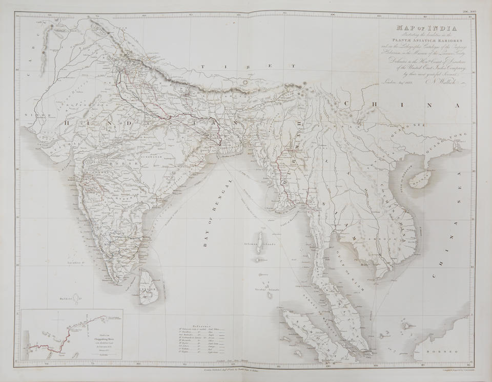 WALLICH, NATHANIEL. 1786- 1854. Plantae Asiaticae Rariores, or, Descriptions and Figures of a Select Number of Unpublished East Indian Plants. London: Treuttel and Würtz, 1830-32.