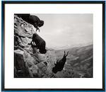 David Wojnarowicz (1954-1992); Untitled (Buffaloes);