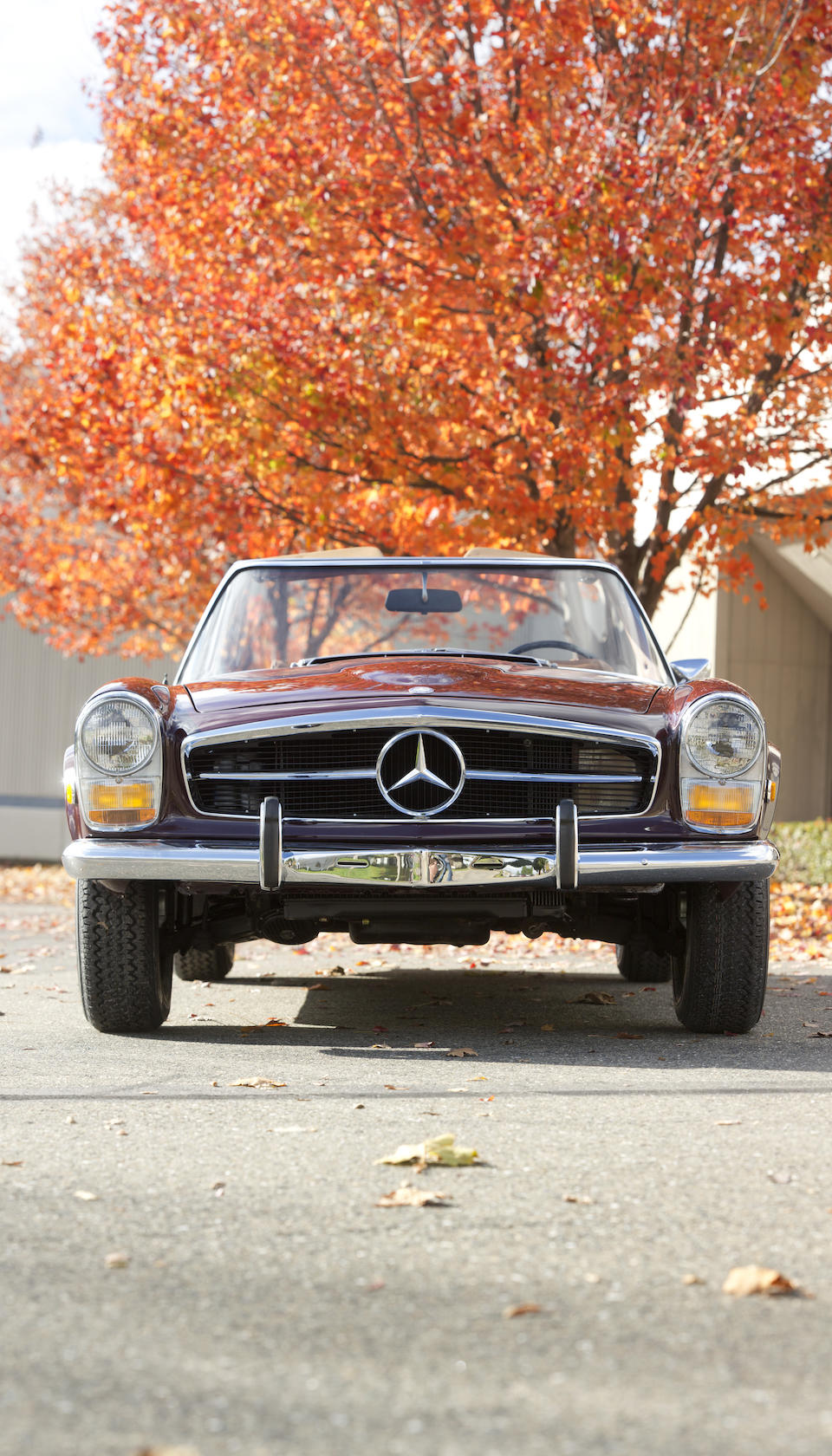 1968 Mercedes-Benz 280SL  Chassis no. 113.044.12.006542