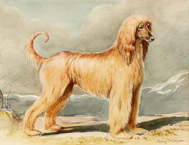 Edwin Megargee (American, 1883-1958) An Afghan Hound in a landscape sight 6 3/4 x 8 3/4in. (19.7 x 22.2cm.)