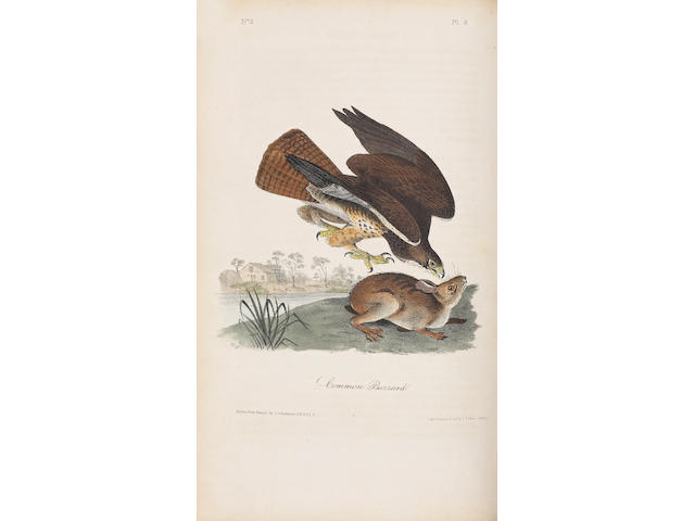 AUDUBON, JOHN JAMES. 1785-1851. The Birds of America, from Drawings Made in the United States and Their Territories. New York: J.J. Audubon / Philadelphia: J.B. Chevalier, 1840-44.
