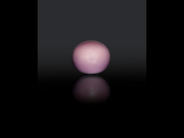 A Published Gem: Large and Rare, Purple Non-nacreous Quahog Pearl