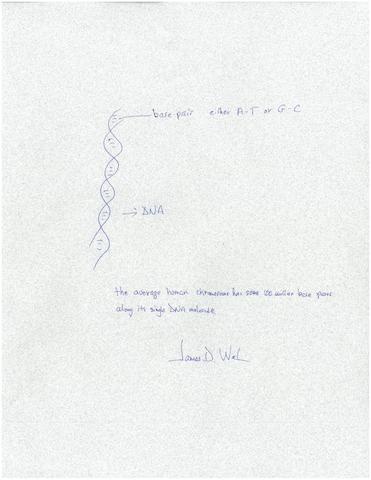 "WATSON, JAMES D. b.1928. Autograph Quotation with Diagram Signed (""James D. Watson""),"