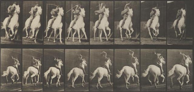 Eadweard Muybridge (1830-1904); Pl. 634 (Galloping Horse), from Animal Locomotion;