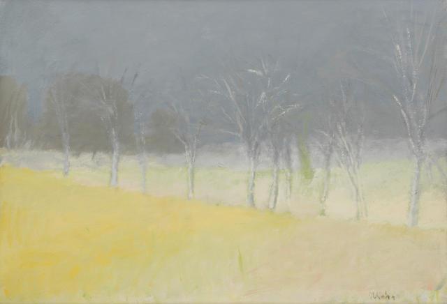 Wolf Kahn (born 1927) Ground Fog 30 x 43in