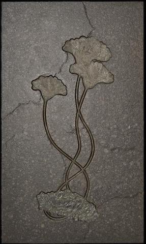Triple Crinoid