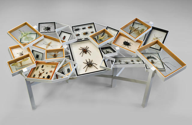Unique Glass-topped Insect Display Table by Contemporary Artist Michael Kalish