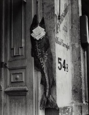 Manuel Alvarez Bravo (1902-2002); El Pez Grande Se Come a Los Chicos (The big fish eats the little ones);