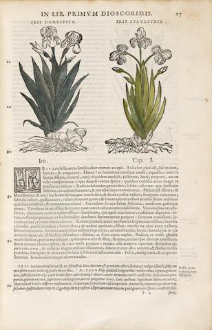MATTIOLI, PETRO ANDREA. 1500-1577. Commentarii secundo aucti, in libros sex Pedacii Dioscoridis Anazarbei de medica materia..... Venice: Officina Valgrisiana, 1559.