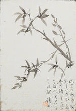 Attributed to Tao Rong (?-1862)  Orchids and Bamboo