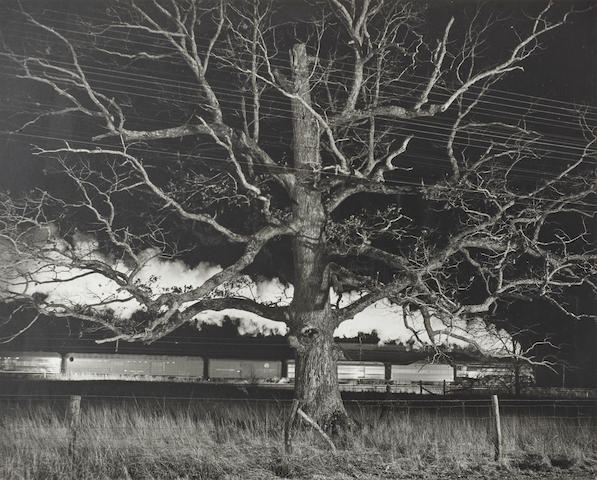O. Winston Link (1914-2000); NW643, Giant Oak, Max Meadows, Virginia;