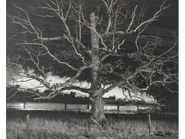 O. Winston Link (1914-2000); NW643, Giant Oak, Max Meadows, Virginia;