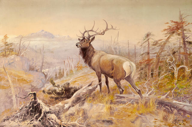 Olaf Carl Seltzer (1877-1957) Montana Elk and Landscape 24 x 36in (Painted in 1908.)