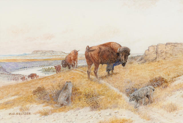 Olaf Carl Seltzer (1877-1957) Bison 10 x 15in