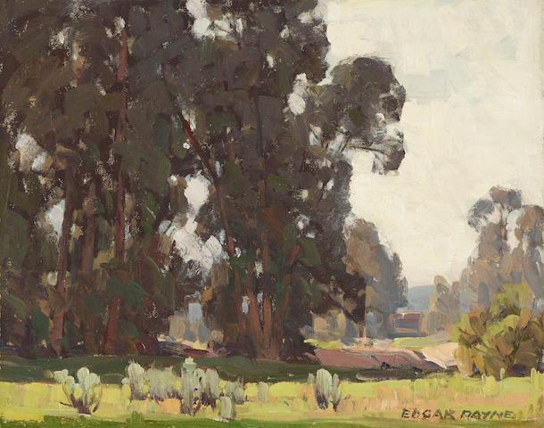 Edgar Payne (1883-1947) A grove of trees 15 1/4 x 19 1/4in