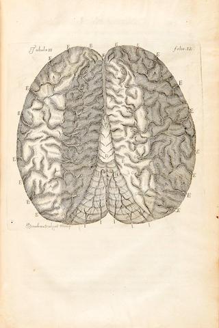 VIEUSSENS, RAYMOND DE. 1641-1715. Neurographia universalis. Lyons: Jean Certe, 1716.
