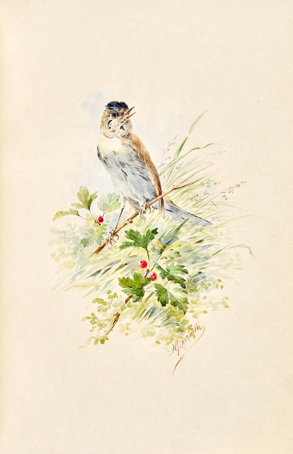 Theuriet, André. 1833-1907 Nos Oiseaux. Paris: Library Artistic H. Launette, 1887.