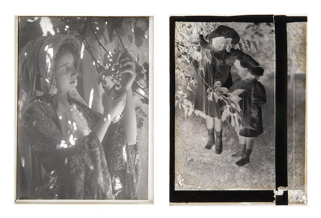 Keene, Minna. 1861-1943. [Young Woman; Two Young Girls]. Two small glass plate negatives of Cape Town portraits, the first  a young woman (her daughter Violet) looking at grapes under a bower; the second, two young girls posing by a tree (Violet and her younger sister), each image 160 x 120mm. [Cape Town c. 1905-10; but possibly Toronto c.1920s].