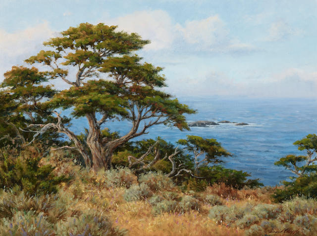 David Chapple (born 1947) Monterey Cypress 18 x 24in