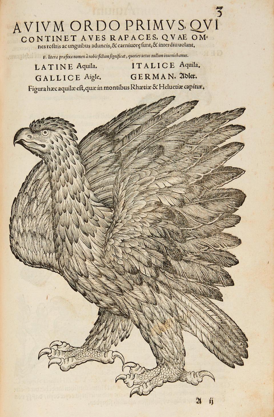 GESNER, CONRAD. 1519-1565. Icones avium ordo primus. Zurich: Christopher Froschauer, 1560.