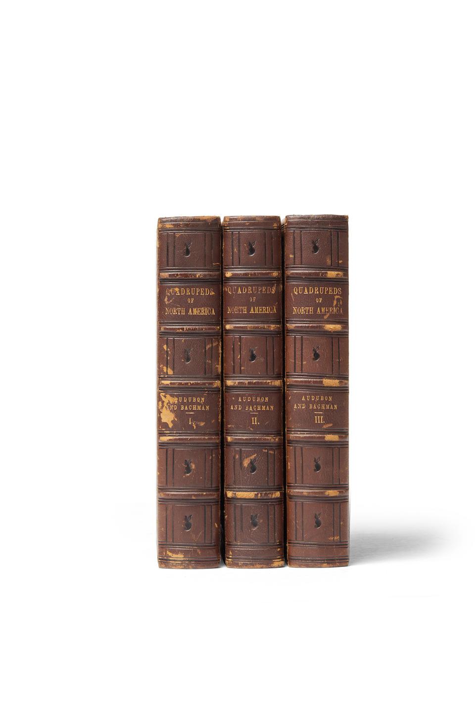 AUDUBON, JOHN JAMES. 1785-1851; AND JOHN BACHMAN. 1790-1874.  The Quadrupeds of North America. New York: V.G. Audubon, 1854.