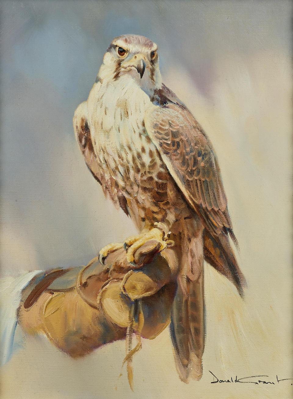 Donald Grant (British, 1930-2001) A perched falcon 16 x 12 1/4in (40.6 x 31.1cm)