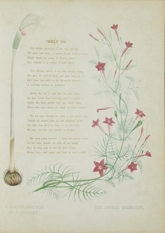 INDIA: FLOWERS. 4 titles: 1. BEDDOME, RICHARD HENRY. 1830-1911. The Ferns of British India. Madras: Gantz Brothers, 1866.