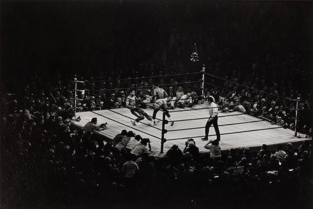 Elliott Erwitt (born 1928); NYC (Mohammed Ali and Joe Frazier bout);
