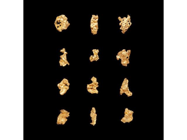 Twelve Australian Gold Nuggets