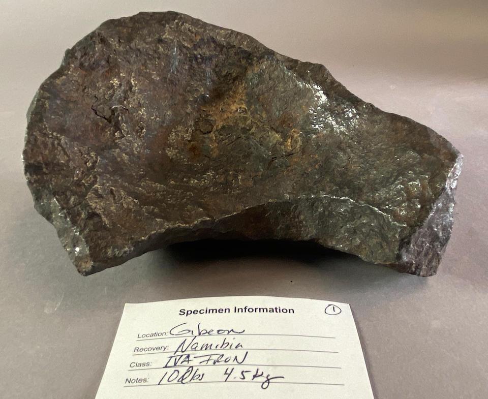 Aesthetic Gibeon Meteorite - Complete Individual