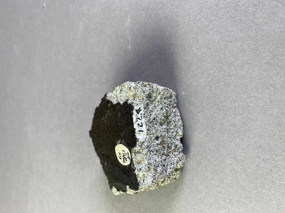 Barwell Meteorite Fragment