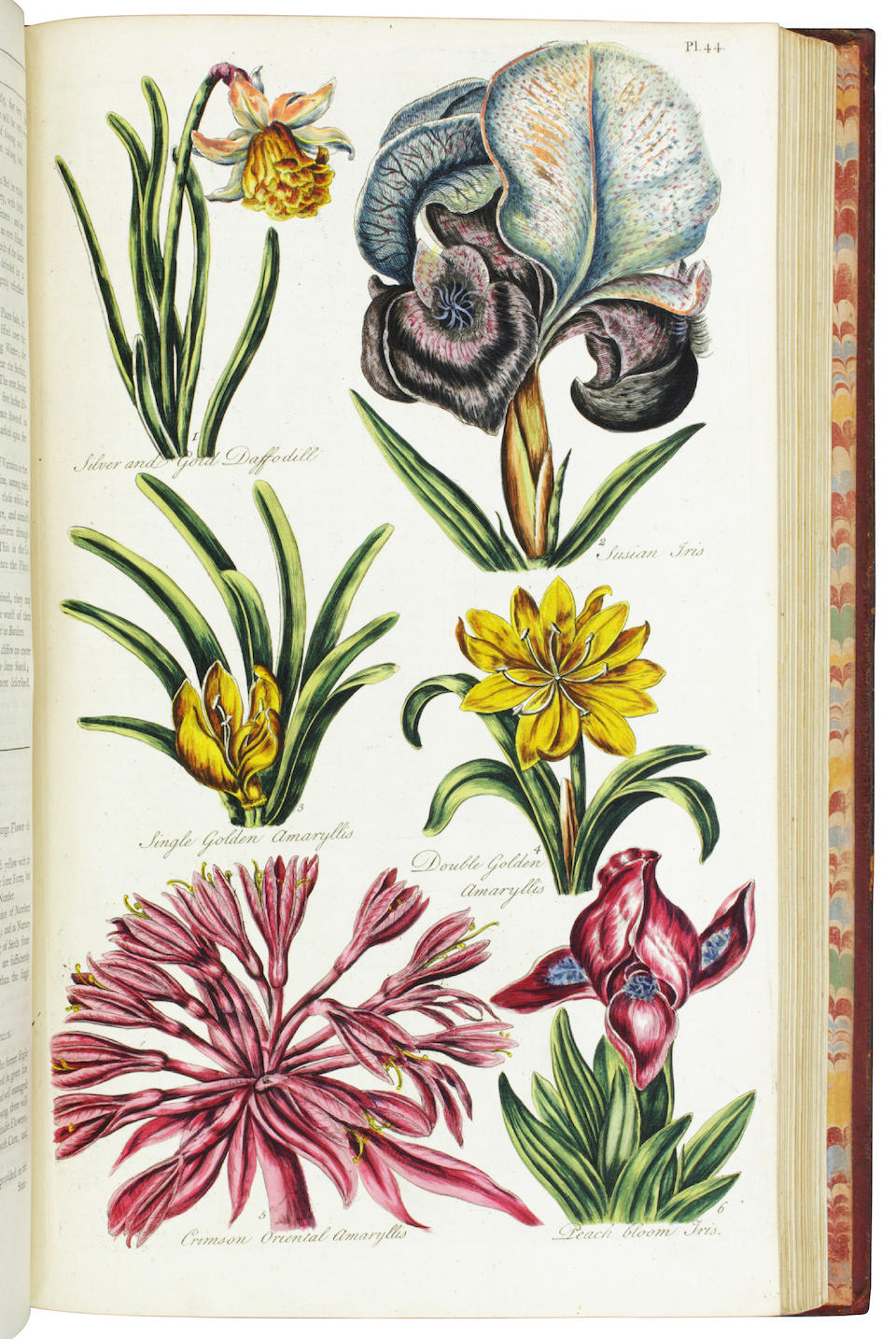 HILL, JOHN. 1716-1775. Compleat Body of Gardening. London: printed for T. Osborne; T. Trye; S. Crowder and Co.; and H. Woodgate, 1757.