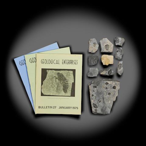 Trilobite Group