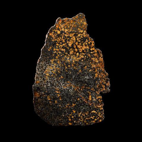 Sericho Pallasite - Slice